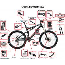 Четыре основные категории взрослых велосипедов