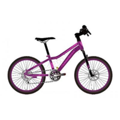 """Подростковый велосипед Nameless 20"""" J2200DW, фиолетовый, 13"""" (2021)"""